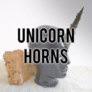 Unicorn Horns